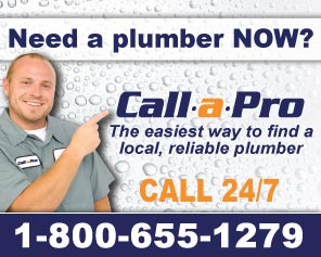 Call a Pro for Plumbers in Mesa